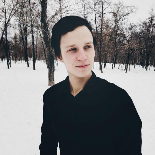 Аватар Mikhail Nekrytov