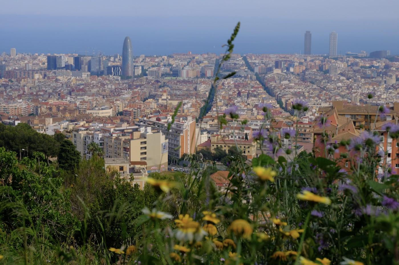 Барселона классная, но похоже не для работы в IT (может потом?)
