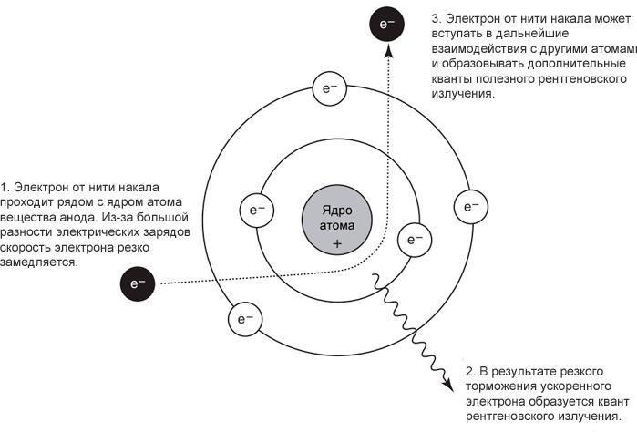 Как образуется рентгеновское тормозное излучение
