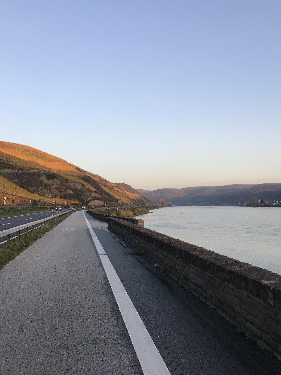 вдоль Рейна